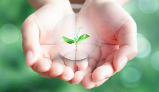 安心して働ける環境は整備されるの?フリーランス保護指針を専門家が解説!